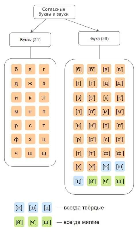 согласные буквы и звуки в русском алфавите